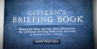 Citizensbriefingbook1