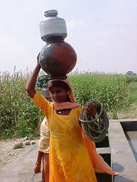 Water_carrier_ado_2